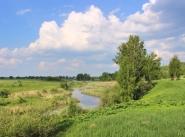 Коттеджный поселок Полесье